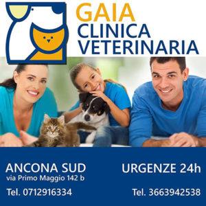 Clinica Veterinaria Gaia Ancona Sud